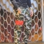 กางเกง Jogger ขาจั๊ม พรีเมี่ยม ผ้า วอร์ม รหัส WT 679 RR สีทหาร แถบ แดง thumbnail 1