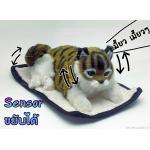 ตุ๊กตาแมว เซ็นเซอร์จับมือผ่าน แล้วส่วนหัวและหางจะเคลื่อนไหว และมีเสียงร้องเมี้ยวด้วย [Cat-SS3]