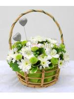 กระเช้าดอกไม้ Green Forever