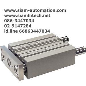 Cylinder SMC MGPM20-100