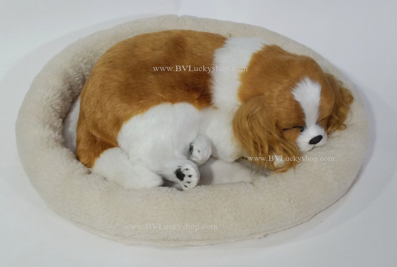 ตุ๊กตาหมา นอนหลับ หายใจได้ (ใส่ถ่าน) สีน้ำตาลอ่อน ขนหูยาว