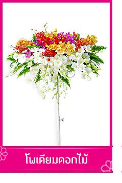 โฟเดียมดอกไม้ TOUCHOFORCHID ร้านดอกไม้ บริการรับจัดส่งช่อดอกไม้, พวงหรีด , กระเช้าดอกไม้, พวงมาลัยดอกไม้ ในเขตกรุงเทพ และปริมณฑล 028846256 0988816543 facebook: touchoforchid Line@touchoforchid