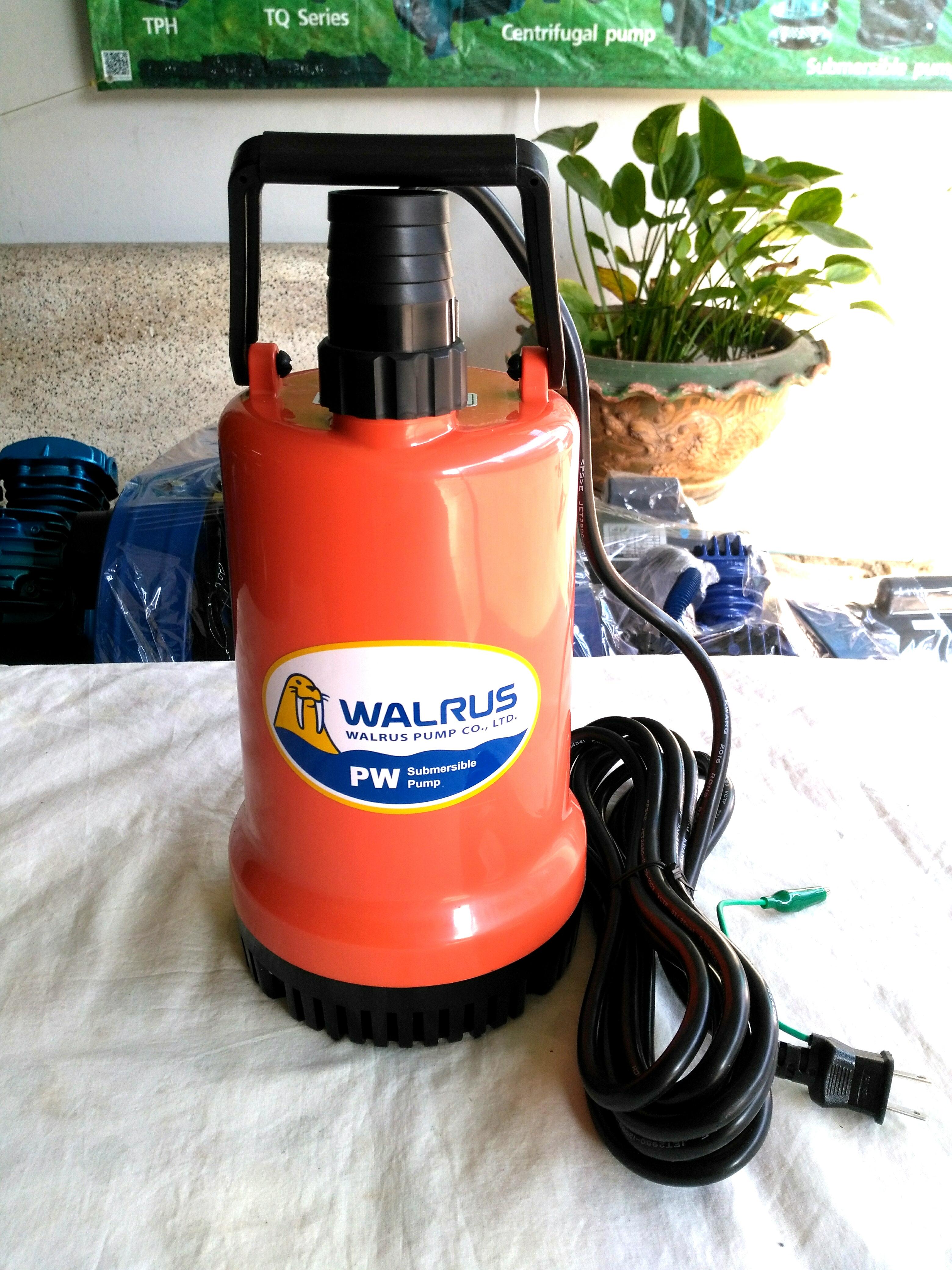 ปั๊มแช่ 1.5 นิ้ว WALRUS รุ่น PW250A