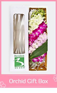 Orchid Gift Box TOUCHOFORCHID ร้านดอกไม้ บริการรับจัดส่งช่อดอกไม้, พวงหรีด , กระเช้าดอกไม้, พวงมาลัยดอกไม้ ในเขตกรุงเทพ และปริมณฑล 028846256 0988816543 facebook: touchoforchid Line@touchoforchid