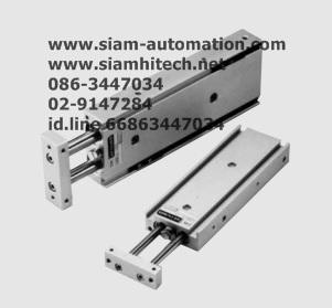 Cylinder Twin Rod ADRM10-30-W13