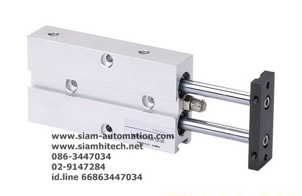 Cylinder Twin Rod TN20-100-S