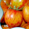 Red color peach tomatoes