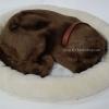 ตุ๊กตาหมา นอนหลับ หายใจได้ (ใส่ถ่าน) สีกาแฟ