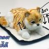 ตุ๊กตาแมว เซ็นเซอร์จับมือผ่าน แล้วส่วนหัวและหางจะเคลื่อนไหว และมีเสียงร้องเมี้ยวด้วย [Cat-SS1]