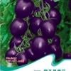 Purple fruit tomato