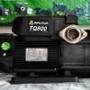 ปั๊มน้ำอัตโนมัติ 1 นิ้ว WALRUS รุ่น TQ800