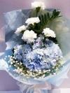 ช่อดอกไม้ไฮเดรนเยียฟ้า คาร์เนชั่นขาว