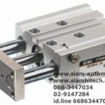 Cylinder SMC MGPM12-30Z