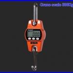 เครื่องชั่งแขวนดิจิตอล เครื่องชั่งแบบแขวน ตาชั่งแขวนดิจิตอล Digital Crane Scales300 kg (สั่งซื้อจำนวนมากราคาพิเศษ)