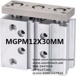 Cylinder Twin Rod MGPM12x30