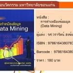 (Pre - Order) การทำเหมืองข้อมมูล (Data Mining)