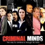 Criminal Minds Season 5 / คริมินอลไมน์ อ่านเกมอาชญากร ปี 5 / 6 แผ่น DVD (บรรยายไทย)
