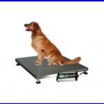 เครื่องชั่งสัตว์ เครื่องชั่งสัตว์เลี้ยง เครื่องชั่งน้ำหนักสัตว์ ขั่งน้ำหนักได้ 300 kg ค่าละเอียด 50g Pet Scales TCS-D300 300kg 50g