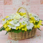 กระเช้าดอกไม้ High Spirits