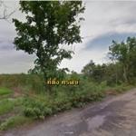 ขายที่ดิน 185 ไร่ ซอยวัดพืชอุดม ลำลูกกาคลอง 13 พื้นที่สีม่วง