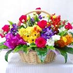 กระเช้าดอกไม้ Spring of Color