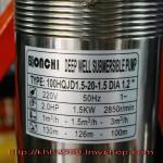 ปั๊มบาดาล จีน BONCHI 2 HP. บ่อ 4 นิ้ว