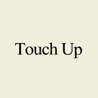 ร้านTouch up Brush