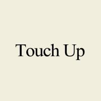 ร้านTouch up Brush