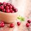 Puritan's Pride Cranberry 25,000 mg 60 เม็ด วิตามินบำรุงต่อมลูกหมาก สูตรเข้มข้น ทานเพียงวันละ 1 เม็ด จากอเมริกาค่ะ thumbnail 2