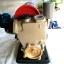 ปั๊มน้ำอัตโนมัติ 370 วัตต์ KANTO รุ่น KT-PS-150 thumbnail 2