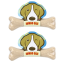 PET2GO ขนมขัดฟันสุนัข เดลี่ เดนทัลโบน รสนม 175g (2ชิ้น/ชุด) thumbnail 1