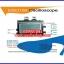 ดิจิตอล ออสซิลโลสโคป AVR DSO150 Digital Storage Oscilloscope mini +USB cable AVR DSO150 thumbnail 2