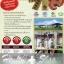 (2กล่อง) เห็ดหลินจือมิน สายพันธุ์สีแดง Linhzhimin 60 เม็ด x2 กล่อง + ของแถมตามโปร thumbnail 3