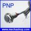 พร็อกซิมิตี้เซนเซอร์ เซนเซอร์แบบตรวจจับแม่เหล็ก Hall Sensor PNP 3-wire NO dia 12mm Proximity Switch NJK-5002A thumbnail 1