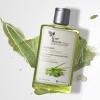 Shampoo Aloe Vera Extract (สินค้าคละได้ ขั้นต่ำ 2 ขวด ค่าจัดส่งฟรีทั่วประเทศ (พัสดุธรรมดา)