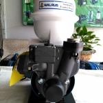 ปั๊มน้ำอัตโนมัติ 3/4 นิ้ว WALRUS รุ่น TP820P