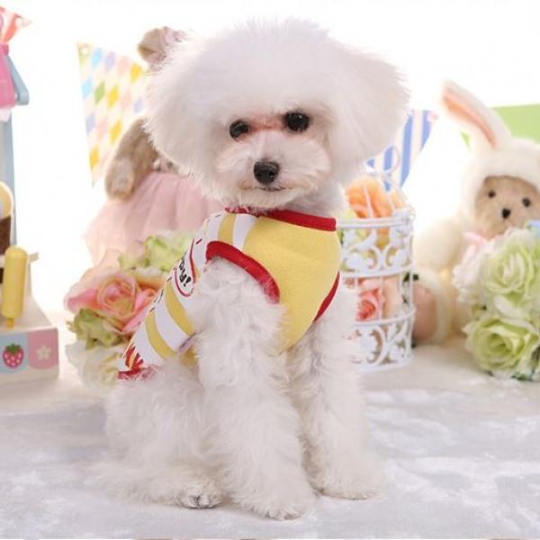 รูปภาพสินค้า เสื้อกล้ามลูกสุนัข เสื้อกล้ามน้องหมาตัวเล็ก