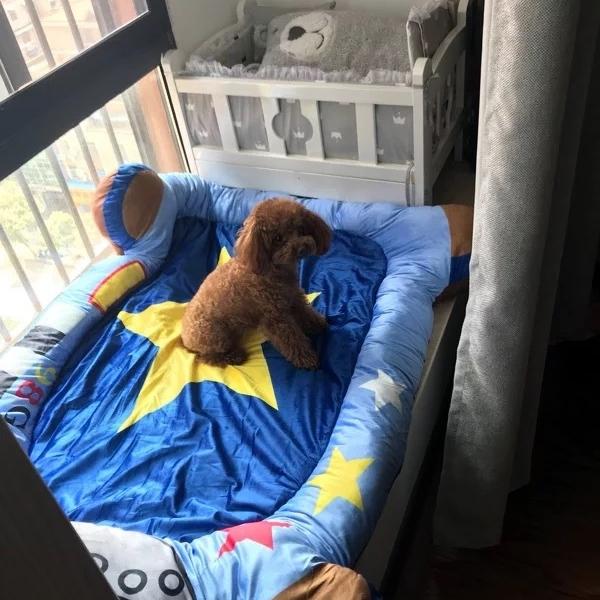 รูปภาพสินค้า ที่นอนสุนัข เบาะนอนน้องหมาใหญ่ ลาย การ์ตูน