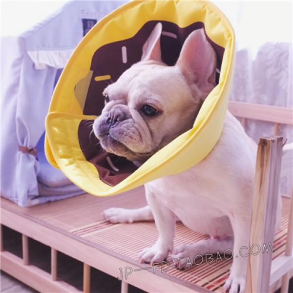 รูปภาพสินค้า ปลอกคอกันเลืยสุนัข แบบผ้า ไม่บาดคอน้องหมา